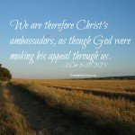 Which type of ambassador for Christ are you?
